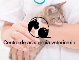 Centro Clínico Veterinario