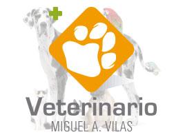 Centro Veterinario Miguel Á. Vilas